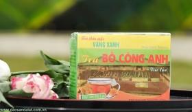Trà Bồ Công Anh-10 túi