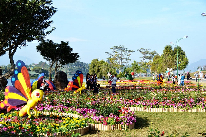 Festival-Hoa-dacsandalat-4