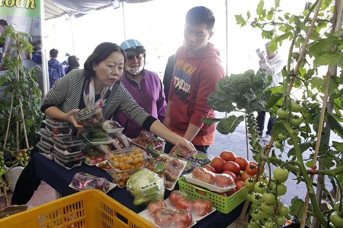 nhung-diem-den-khong-the-bo-qua-tai-festival-hoa-da-lat-dacsandalat-3