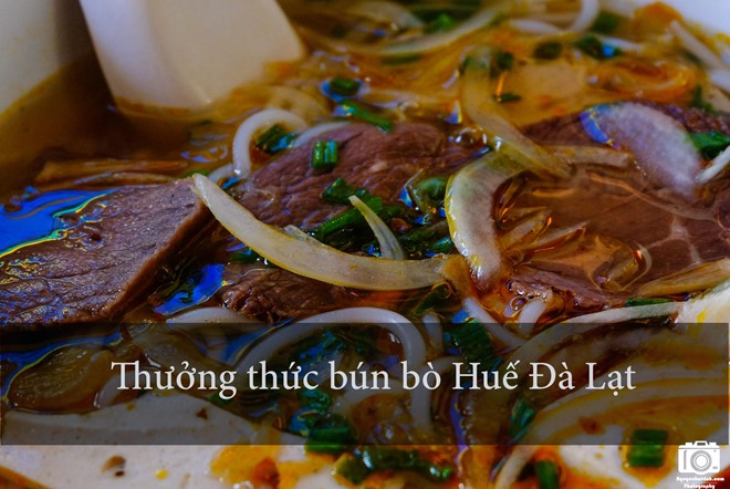 nhung-trai-nghiem-khong-the-bo-qua-dip-304-tai-da-lat-1