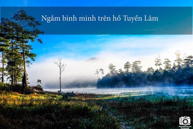 nhung-trai-nghiem-khong-the-bo-qua-dip-304-tai-da-lat-10