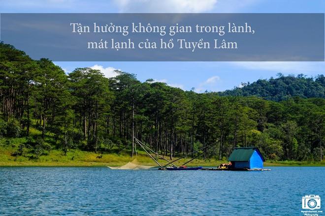 nhung-trai-nghiem-khong-the-bo-qua-dip-304-tai-da-lat-11