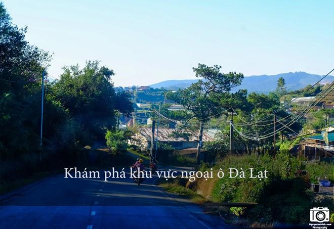 nhung-trai-nghiem-khong-the-bo-qua-dip-304-tai-da-lat-3