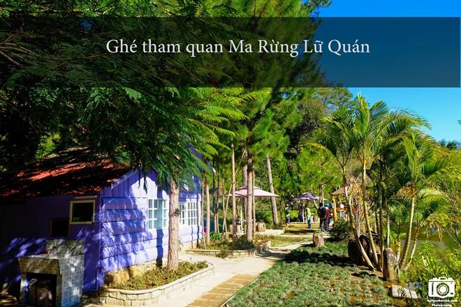 nhung-trai-nghiem-khong-the-bo-qua-dip-304-tai-da-lat-5