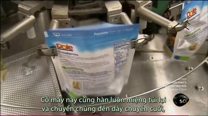 dau-tay-dong-lanh-7