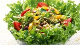 salad-tron
