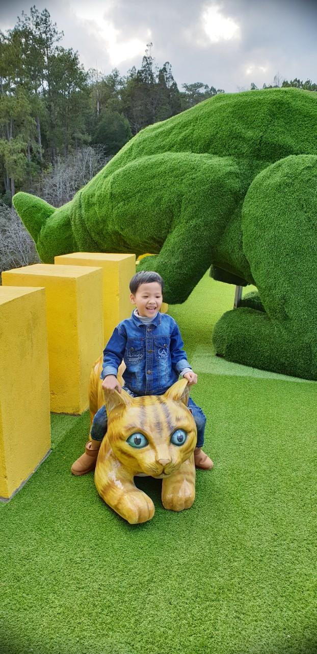 fresh-garden-canh-dong-hoa-moi-ngoai-thanh-da-lat (2)