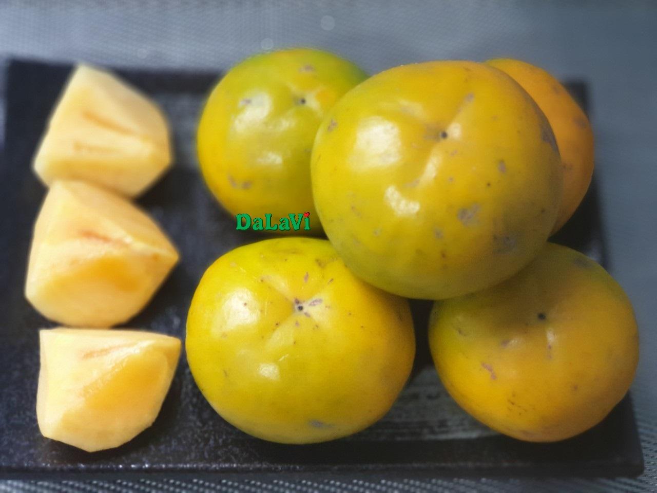 hong-gion-fuji-nhat-ban (1)